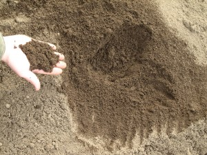 Our topsoil is perfect for any Augusta or Aiken yard or landscaping project.